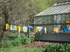 Prayer Flags near the green house, Green Gulch Zen Center